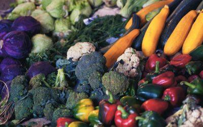 Feeding the Stoke – Nourishing Your Body