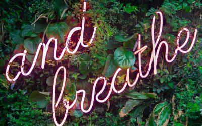 Take A Break: 5 Ways To Zen Out