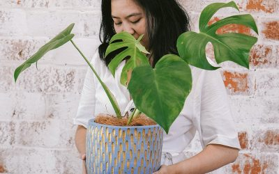 Rock Your Jungle Vibe, Staying Alive with Plants