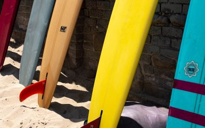 Everything You Need to Know About Surfboards